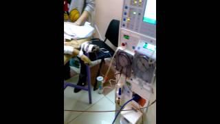 Гемодиализ собаке на аппарате Fresenius 4008. Hemodialysis for dogs and cats