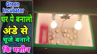 घर पे बनाओ चूजे निकलने की मशीन   home made incubator