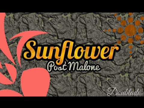 Post Malone - Sunflower [1H]