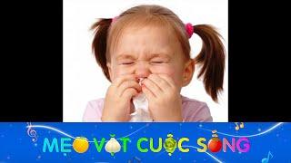 Mẹo chữa ngạt mũi cực đơn giản