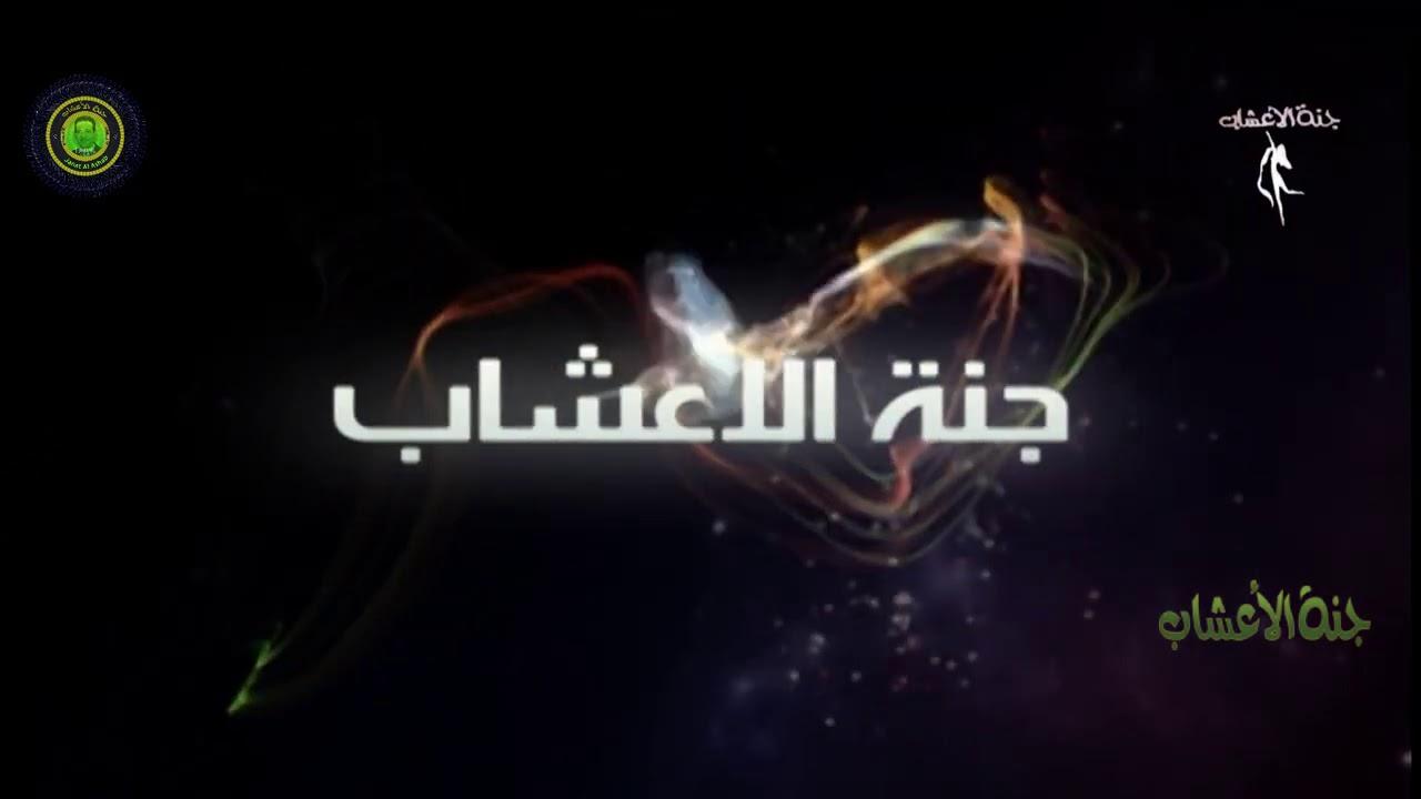 intro janat alasha/مقدمة جنة الاعشاب