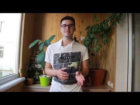 Выращивание кофе в домашних условиях