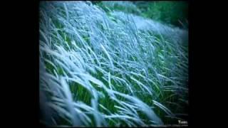 VOICE OF MADHI - Chinna china asai (Dil hai chhota sha - Tamil)