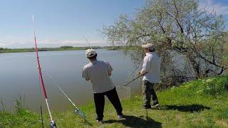 рыбалка в Алматы ловим толстолобика на технопланктон