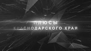[Недвижимость] Плюсы Краснодарского края. [Климат, Экология, Продукты] [Краснодар и Геленджик]