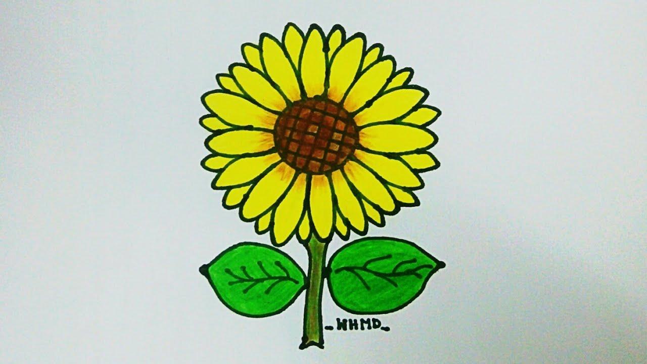 วาดรูปและระบายสีดอกทานตะวัน How to draw a sunflower 🌻