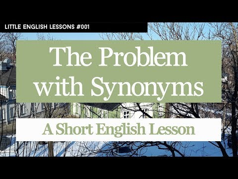 The Problem With Synonyms - Little English Lesson #001