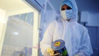 Учебные заведения в Азербайджане из-за коронавируса закрыли до 27 марта