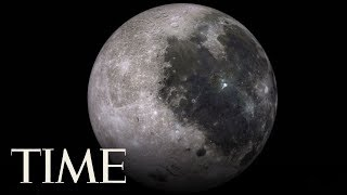 China Grows The First Seed On The Moon | TIME