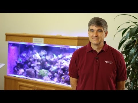 Phil Heise - 2013 Faculty & Staff Campaign