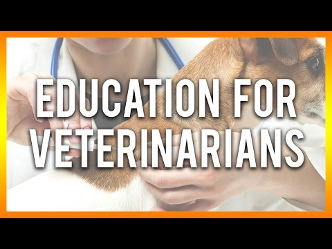 Education for Veterinarians - Free Veterinary CE Below