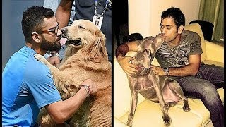 Virat Kohli, Ms Dhoni & other Cricketers Pet DOGS thumbnail