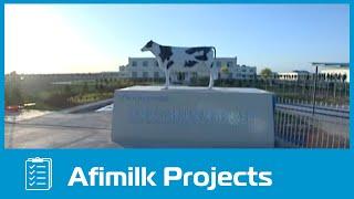 TianNing Dairy Farm in China (Afimilk)