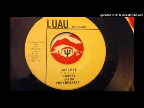 Harvey and the Phenomenals-Darlene (rare Ohio boddie soul instro)