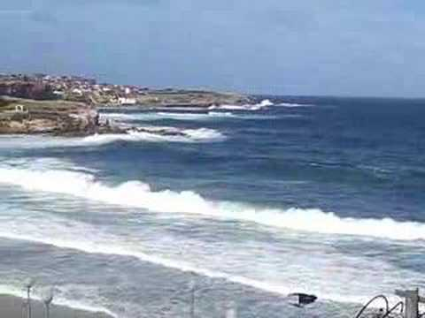 The Surf On Coogee Beach