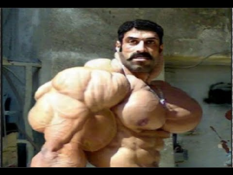 TOP 5 Best Bodybuilder Physiques Of All Time - YouTube