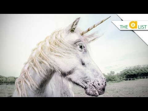 are unicorns a myth or reality