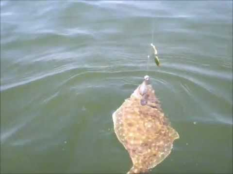 Flounder fishing point lookout md july 23 2011 youtube for Point lookout fishing