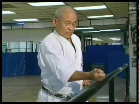 GoSoku Ryu: IKA Soke Takayuki Kubota (10th Dan) Montage