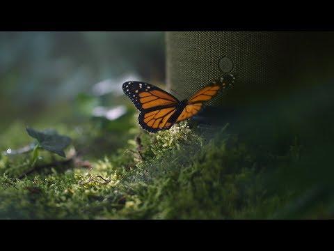 Harmonies by Bang & Olufsen