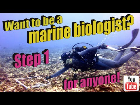 Want to be a marine biologist? Step 1 for anyone