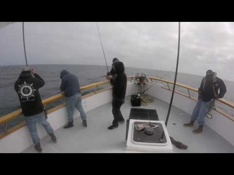 ray j and phenix rods 2 day rock fishing trip on the constitution at san nicolas island