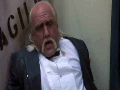 Hulk Hogan Vs Undertaker