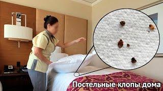 Постельные клопы у вас дома(, 2016-10-30T13:40:27.000Z)