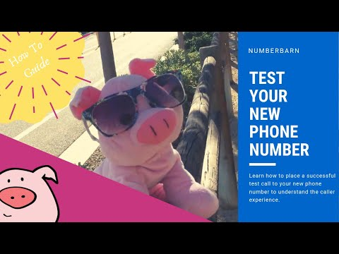 place a phone number to discover