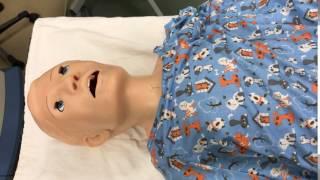 HAL the Simulation Mannequin