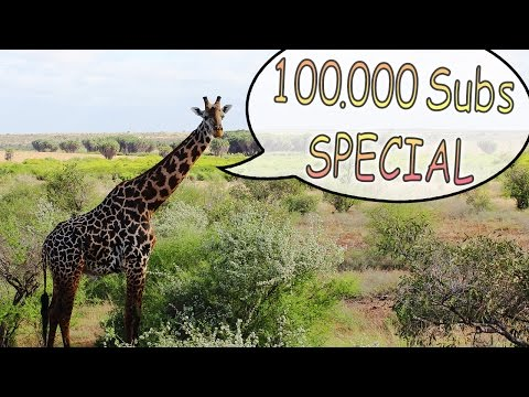 Travel in Kenya (Special 100.000 SUBS !!!)