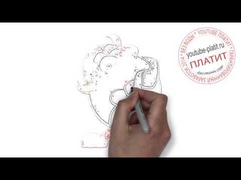 Смешарики пингвин ПИН смотреть видео  Как правильно нарисовать пингвина из смешариков карандашом