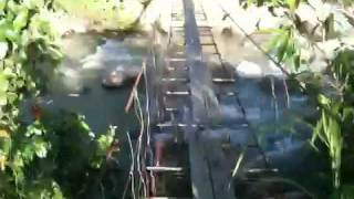 Home-made Bridge Over Wild Sabah River
