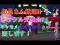【ポケモン】ミラクル交換会!オシャボ入りキャモメ、ミズゴロウ、クチート流します!【USUM】