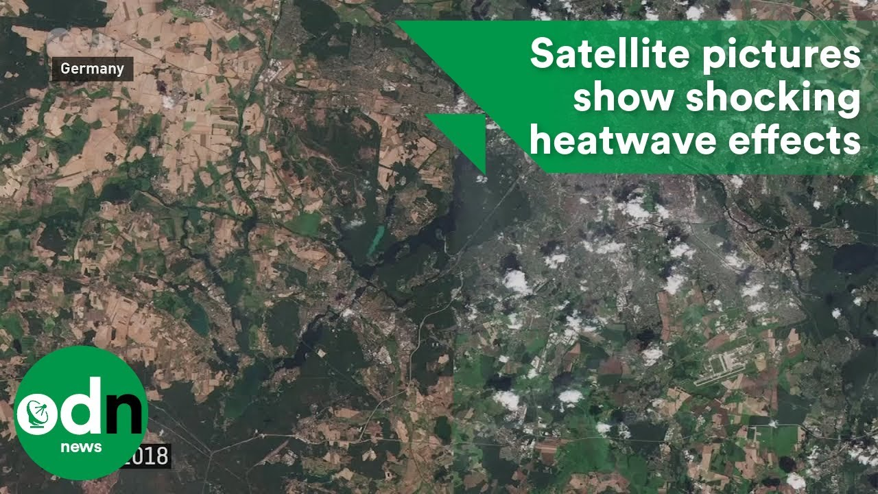 These Photos From Space Show the Scorching Effects of This Summer's Heat