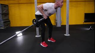 Fixed Barbell Landmine 90 Degree Single Arm Bent Over Row