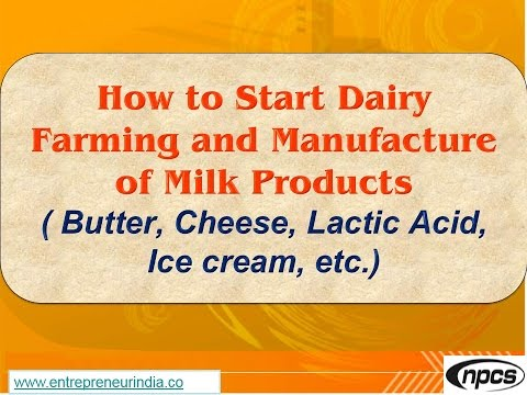 How to Start Dairy Farming and Manufacture of Milk Products Butter,Cheese,Lactic Acid,Ice cream,etc.