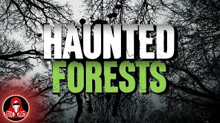 4 Real Life Haunted Forests - Darkness Prevails