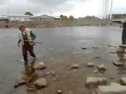 9th street dam and bridge fishing for salmon and how to for How to get free fishing gear