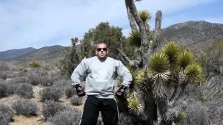 Hardcorowy Koksu, kaktusy i bilety na walkę! 2017 Video