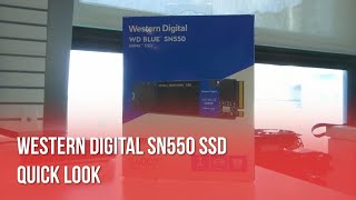 WD Blue SN550 NVMe Solid State Drive: A Quick Look!