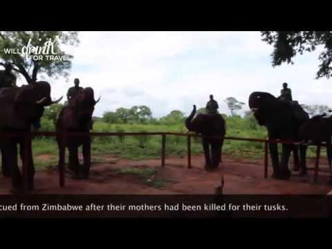 Episode 3: Zambia's Victoria Falls, Devil's Pool, and Livingstone