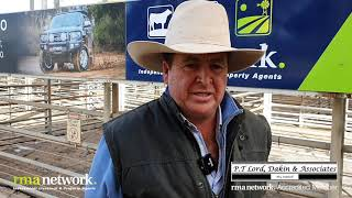 Dubbo Store Cattle Sale, Friday 16th July 2021