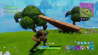 Fortnite - Wolfgaming043 & I Gets The W