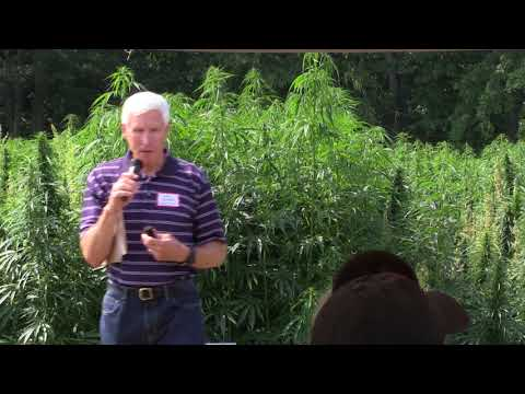 2017 Cornell Industrial Hemp Field Day, Ithaca, N.Y.