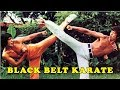 Wu Tang Collection - Black Belt Karate