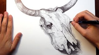 "Ballpoint Pen Drawing ""BULL SKULL"""