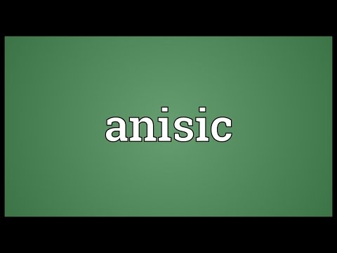Anisic Meaning