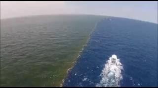 видео Соленость воды Черного моря. Какова соленость Черного моря?