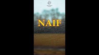 Naif - Posesif
